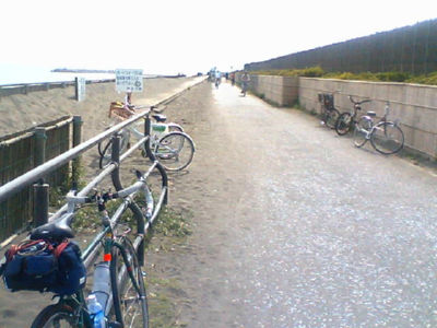 bikeroad1.jpg